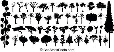 Vector negro de la silueta del árbol. Plantas de bosque aisladas en el fondo blanco