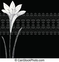 Vector negro, marco de iris y estandarte de adorno
