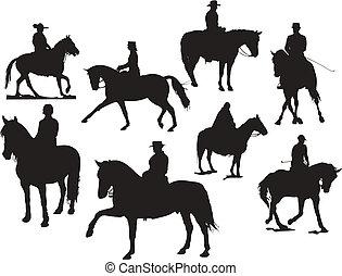 vector, ocho, caballo, silhouettes., jinete, ilustración