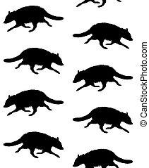 vector, patrón, silueta, mapache, seamless