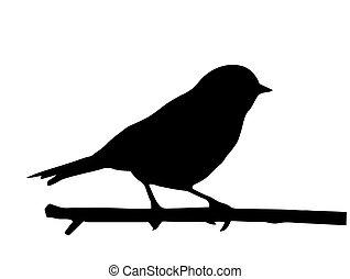 Vector silueta del pájaro pequeño en rama