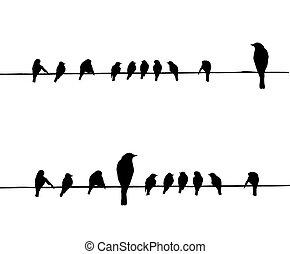 vector, siluetas, alambre, aves