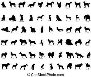 Vector siluetas de perros