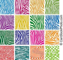 Vectores de texturas coloridas de la piel de cebra