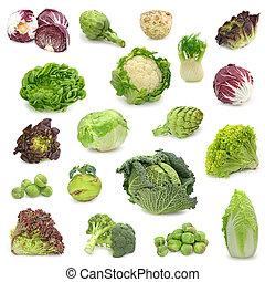 vegetal, recoger, col, verde