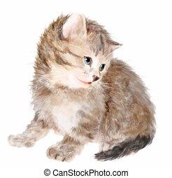 velloso, acuarela, imitación, kitten., painting.
