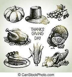 vendimia, set., acción de gracias, mano, ilustraciones, dibujado, día
