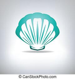 venera, seashell., vector.