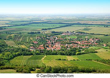 verano, fértil, viñas, verde, aldea, pequeño