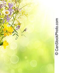verano, plano de fondo, flores