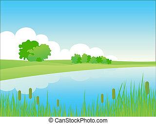 verano, ribera, paisaje.