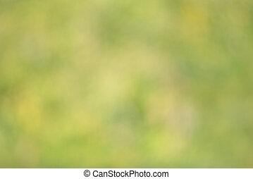 Verde abstracto, la naturaleza borrosa, un fondo de colores claros