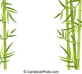 verde, bambú, vector, tallos