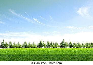 Verde campo azul fondo del cielo azul