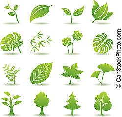 verde, conjunto, hoja, iconos