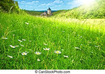 Verde prado del castillo Karlstein