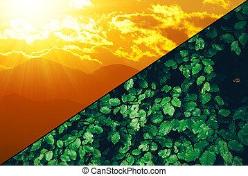 verde, renovable, -, economía, fotosíntesis, sostenible