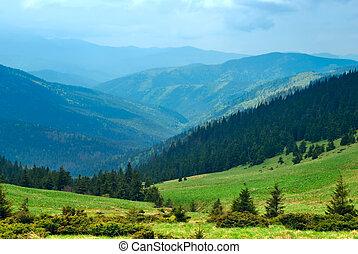 Verde valle de montaña y cielo azul