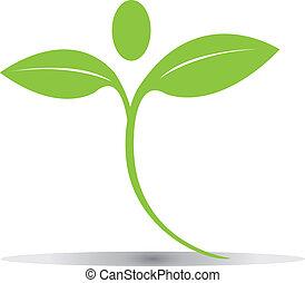 Verdes hojas de logo vector Eps10
