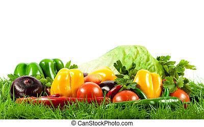 Verduras orgánicas.