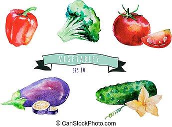 Verduras vectoriales acuáticas listas. Tomate, pepino, pimienta, huevo
