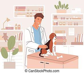 veterinario, clinic., estetoscopio, cheque, veterinario, plano, animal, moderno, examen, o, ilustración, examinar, hospital., joven, médico, feliz, salud, perro, coloreado, veterinario, vector
