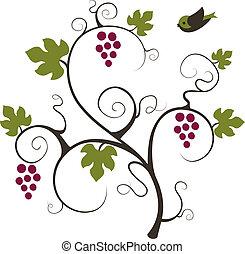 Viña de uva y pájaro.