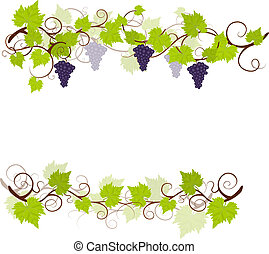Viñas de uva.