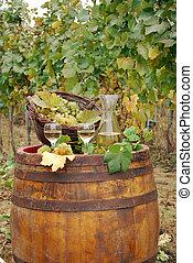 Viñedo y vino blanco