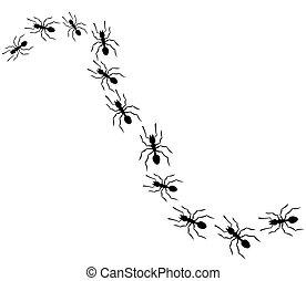 viajar, hormigas, fila