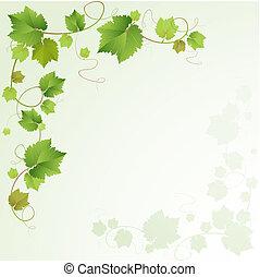 vid, plano de fondo, uvas