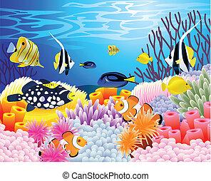 vida, mar, plano de fondo