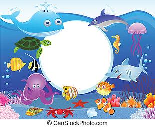Vida marina con signo en blanco