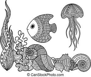 vida marina, conjunto, pez