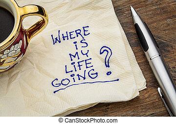 vida, mi, dónde, yendo