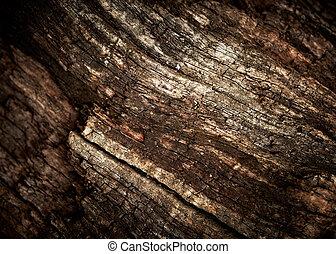 Vieja textura de madera de roble.