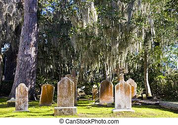 Viejas lápidas bajo musgo español