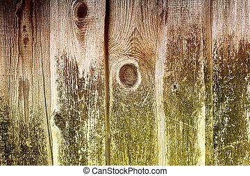 Viejas tablas de madera cubiertas de musgo verde en un fondo rústico