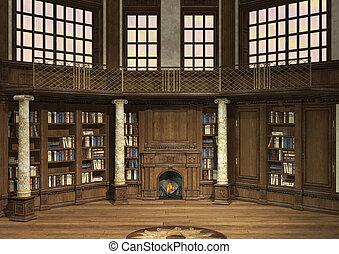 viejo, biblioteca