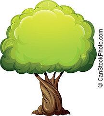 viejo, gigante, árbol