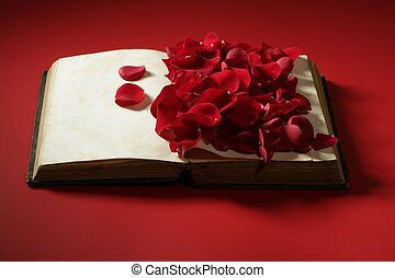 viejo, rosa, encima, pétalos, libro, viejo