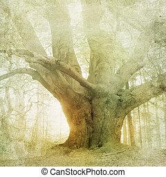 Vintage paisajes forestales