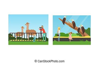 visitantes, ilustración, conjunto, animales, el fotografiar, zoo, gente, vector, visitar, mirar, excursión