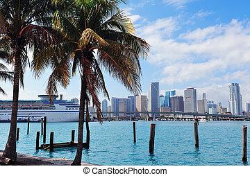 Vista tropical de Miami