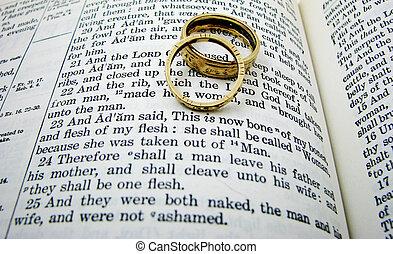 voto, dos, rings., libro, boda, génesis, primero