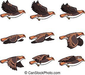 vuelo, animación, halcón, sprite