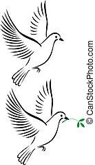Vuelo de paloma