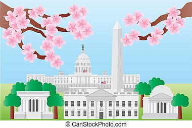 Washington DC con flores de cerezo