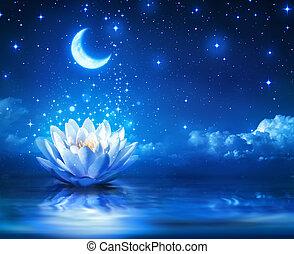 Waterlily y la luna en la noche estrellada
