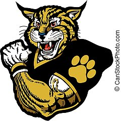 wildcat, fútbol